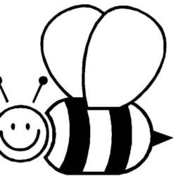 desenho-abelha-imprimir-03