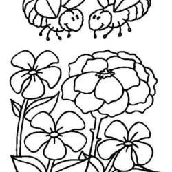 desenho-abelha-imprimir-08