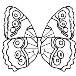 desenho-borboleta-imprimir-pintar-04