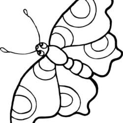 desenho-borboleta-imprimir-pintar-10