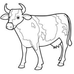 Desenhos De Vacas Para Imprimir E Colorir