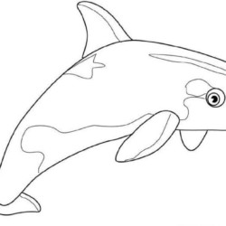 desenho-baleia-imprimir-colorir-09