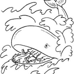 desenho-baleia-imprimir-colorir-13