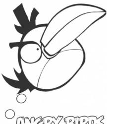desenho-angry-birds-imprimir-11