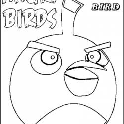 desenho-angry-birds-imprimir-15
