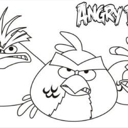 desenho-angry-birds-imprimir-17