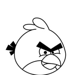 desenho-angry-birds-imprimir-23