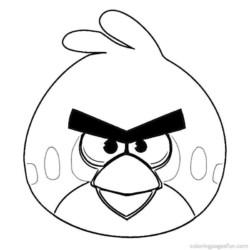 desenho-angry-birds-imprimir-26