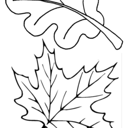 Folhas on Fall Coloring Pages