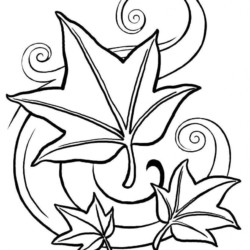 Desenhos de Folhas Desenhos e Colorir