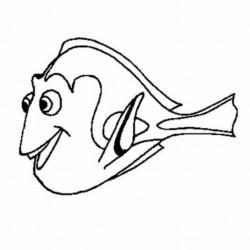 desenho-procurando-nemo-imprimir-20